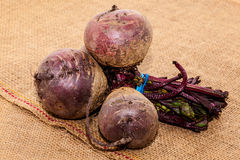 Raw beetroot. A close up of fresh uncooked beetroot Royalty Free Stock Photo