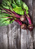 Raw beetroot Stock Photos