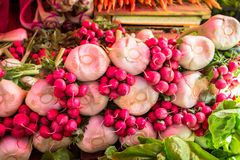 Raw beets from the garden. On the market Royalty Free Stock Images