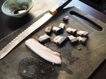 Raw beluga and narwhal muktuk or sushi in the Canadian Arctic royalty free stock photo