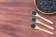Raw black beans. Top view - Phaseolus vulgaris` Black turtle. Raw black beans - Phaseolus vulgaris` Black turtle Stock Image