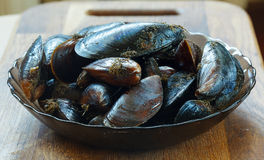 Raw Black sea Mussels ready to cook Stock Images