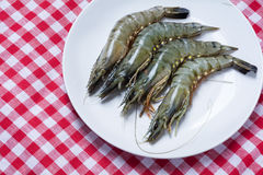 Raw black tiger prawns on a plate on red white tablecloth, view Stock Photos