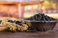 Raw black turtle beans with cart royalty free stock photo
