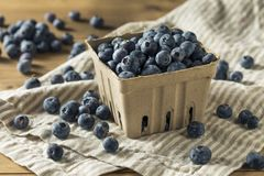 Raw Blue Organic Blueberries. In a Basket Stock Image