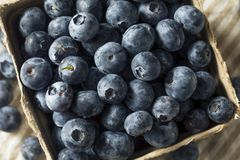 Raw Blue Organic Blueberries. In a Basket Royalty Free Stock Photography