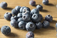Raw Blue Organic Blueberries. In a Basket Stock Photography