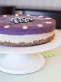 Raw Blueberry Vegan Cake Royalty Free Stock Photos