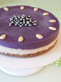 Raw Blueberry Vegan Cake Stock Images
