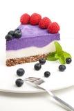 Raw blueberry vegan cake Royalty Free Stock Photo
