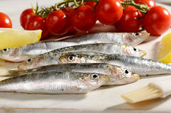 Raw Bluetailed Fish with Tomato and Lemon Royalty Free Stock Photos
