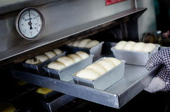 Raw bread. During putting in a oven at about 150 degree Stock Image