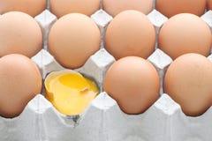 Raw break egg contained carton box Royalty Free Stock Photography