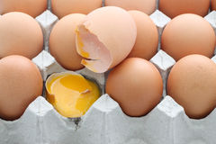 Raw break egg eggshell contained carton box Stock Photos
