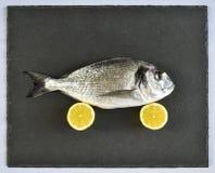Raw bream fish Stock Photo