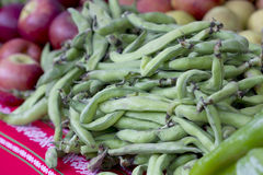 Raw broad beans. Group of raw broad beans on a table with more vegetables Royalty Free Stock Photography