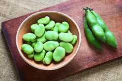 Raw Broad Beans (lat. Vicia Faba). In bowl with pods on the side, photographed with natural light (Selective Focus, Focus on the top of the beans Stock Photography
