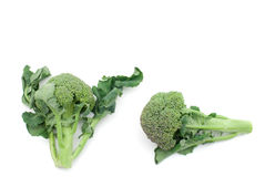 Raw broccoli Royalty Free Stock Photography