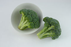 Raw broccoli in bowl Stock Images