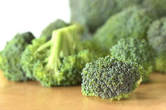 Raw Broccoli Floret Royalty Free Stock Photography