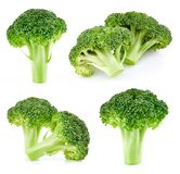 Raw broccoli isolated royalty free stock images
