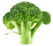 Raw broccoli isolated stock photo