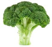 Raw broccoli isolated stock image