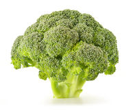 Raw broccoli isolated on white. Fresh broccoli isolated on white background Royalty Free Stock Photography