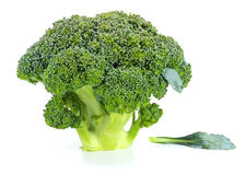 Raw broccoli isolated on white background. Broccoli isolated on white background Stock Photos