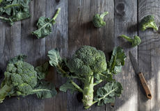 Raw broccoli and leafs on old wooden rustic table Stock Image