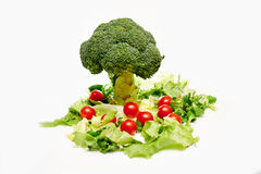 Raw broccoli, tomatoes. Whit green salad Stock Images