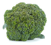 Raw broccoli  on white background. Broccoli  on white background Royalty Free Stock Image
