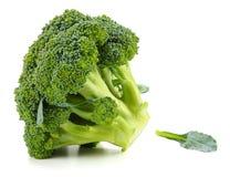 Raw broccoli  on white background. Broccoli  on white background Stock Photo