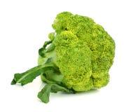 Double broccoli group  on white background Stock Photos