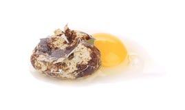 Raw broken quail egg Stock Images