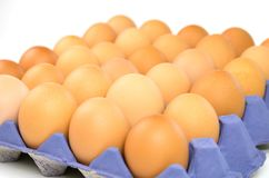Raw brown chicken eggs in container. Isolated raw brown chicken eggs in purple container Stock Photos