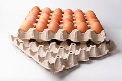 Raw brown Chicken Eggs In paper container tray box. Raw brown Chicken Eggs In paper container tray box on white background royalty free stock photography