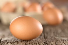 Raw Brown Egg. With egg box in the back Very Shallow Depth of Field, Focus on the front of the first egg Stock Image
