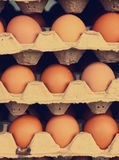 Raw brown eggs in cardboard crater level stock images