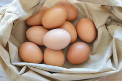 Raw brown hen egg in fabric bag. On wooden board Royalty Free Stock Image