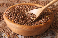 Raw brown lentils in a wooden bowl closeup. horizontal Royalty Free Stock Images