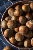 Raw Brown Organic Shelled Hazelnut Filberts Royalty Free Stock Image