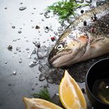 Raw brown trout on ice. With sea salt,  pepper and ingredients. Fresh fish. Top view, copy space. Food background Stock Photo