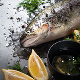 Raw brown trout on ice. With sea salt,  pepper and ingredients. Fresh fish. Top view, copy space. Food background Stock Image