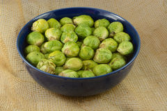 Raw brussel sprouts Royalty Free Stock Photography