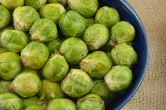 Raw brussel sprouts Royalty Free Stock Photo