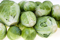 Raw Brussels Stock Image