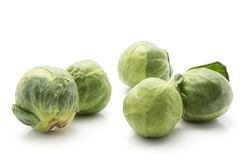Raw Brussels sprout isolated. Raw Brussels sprout five heads isolated on white background Stock Image
