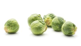 Raw Brussels sprout isolated. Brussels sprout isolated on white background fresh five heads Stock Photography
