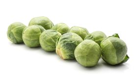 Raw Brussels sprout isolated. Raw Brussels sprout heads in row isolated on white background Royalty Free Stock Photo